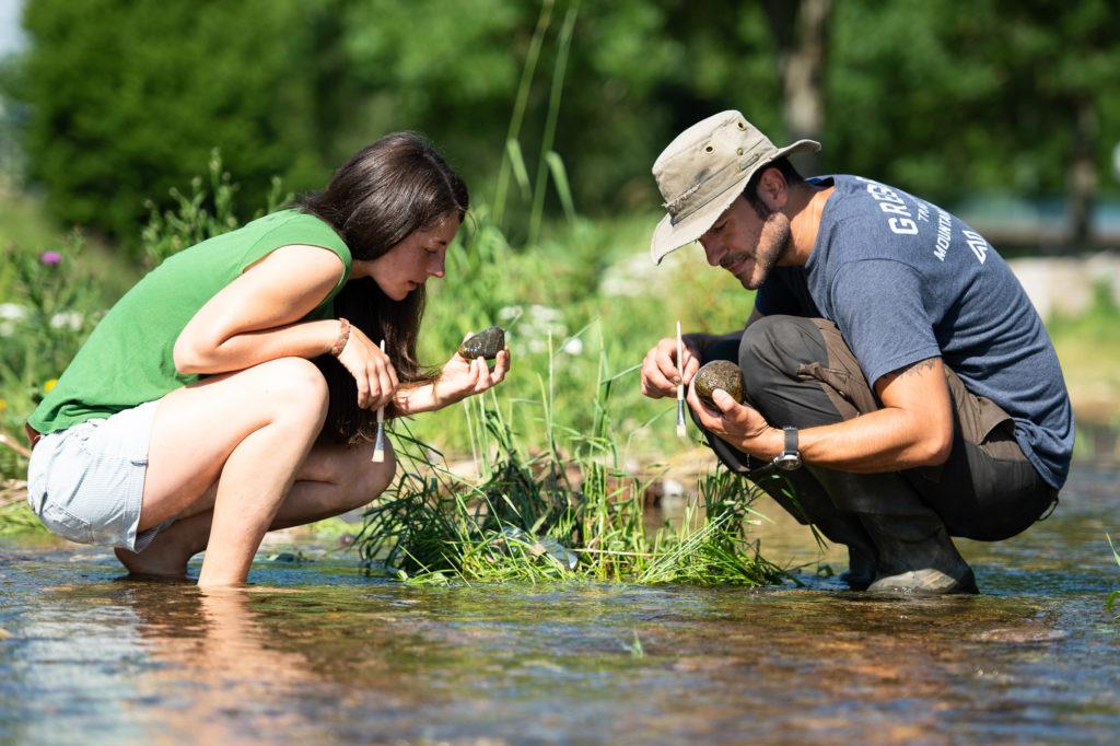 Teilnehmende suchen nach Insektenlarven im Kieslückensystem des Flusses.